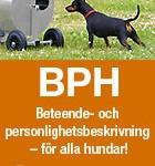 BPH_tillyshundtjanst