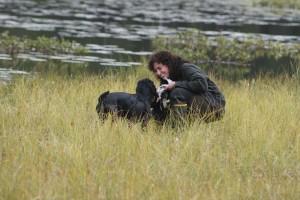 Grundläggande Jaktlydnad Tillys hundtjänst